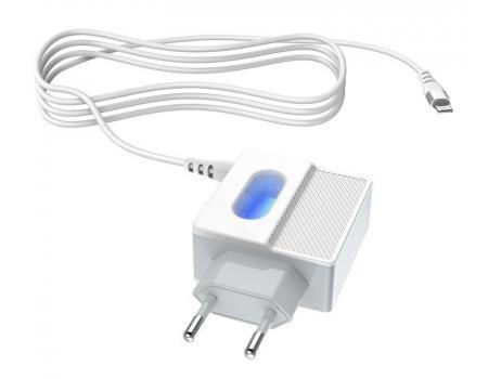 Сетевое зарядное устройство Hoco C75 Lightning